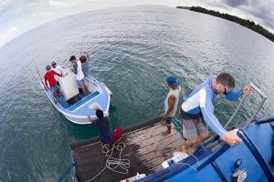 seriti passengers are going fishing by surf banyak